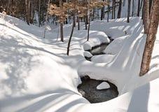 Beauté de l'hiver Photos libres de droits