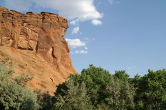 Beauté de montagne de l'Arizona Photo stock
