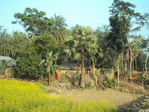 Beauté de village Photos libres de droits