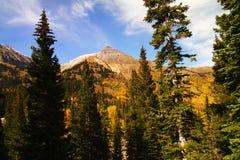 Beauté du Colorado photos libres de droits