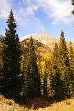 Beauté du Colorado images libres de droits