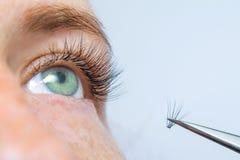 Beauté et concept de mode - procédures d'extension de cil fille avec de longs cils artificiels et tweesers de yeux verts Maquette photos libres de droits