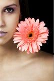 Beauté et fleur Image stock