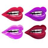 Beauté femelle de désir de maquillage d'illustration de bouche rouge de lèvres de rouge à lèvres de vecteur Photos stock