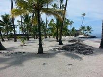 Beauté hawaïenne Images stock