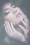 beauté Rétro portrait femelle photographie stock libre de droits