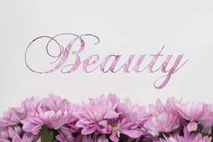 Beauté - thème avec les fleurs roses Image stock