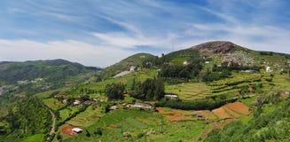 Beauté d'Ooty, Inde Images libres de droits