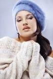 Beauté de l'hiver Image stock
