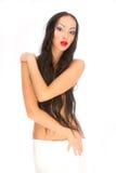 Beaut de pelo largo Fotografía de archivo libre de regalías