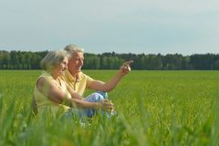 Beauteous old couple. In the middle of the field Royalty Free Stock Images