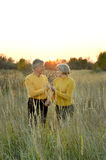 Beauteous old couple Royalty Free Stock Images