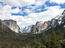 Beautfifulaard, het Nationale Park van Yosemite royalty-vrije stock afbeelding
