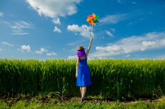 Purple hair girl with pinwheel at wheat field Stock Photo