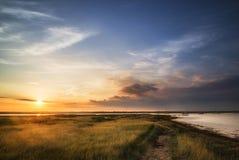 Beautful Summer evening landscape over wetlands and harbour Stock Photos
