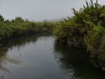 Beauti nature. Beautiful wild place in sri lanka stock photo
