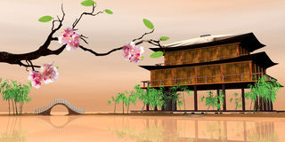 Beauti sakura with nice backgroud Stock Images