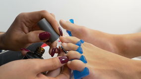Beautician applies treatment on the toe nails of client. Beautician applies treatment on toe nails of client stock video