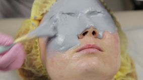 Beautician applying mud mask for woman face in the spa salon. facial rejuvenation procedure, spa treatments.  stock video footage