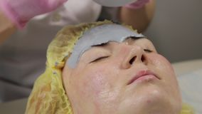 Beautician applying mud mask for woman face in the spa salon. facial rejuvenation procedure, spa treatments.  stock footage