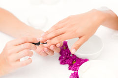 Beautician applying nail varnish to female clients nails. Close up of beautician applying nail varnish to female client nails at spa beauty salon Royalty Free Stock Photography