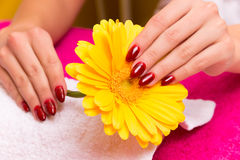 At the beautician Royalty Free Stock Image