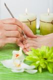 Beautician giving pedicure treatment Stock Images