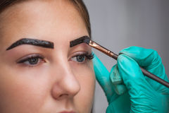 Beautician- makeup artist applies paint henna on previously plucked, design, trimmed eyebrows in a beauty salon in the session cor Royalty Free Stock Image