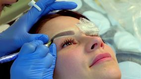Beautician making permanent makeup of eyelash. Applying Permanent Make up on eyebrows. Beautician making permanent makeup of eyelash. Master works with the stock footage