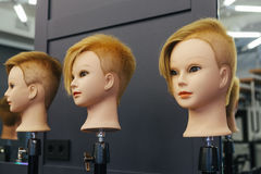 Beautician model heads for practicing in beauty school Royalty Free Stock Images