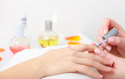 Beautician painting nails female client. Manicure in beauty spa salon. Stock Images