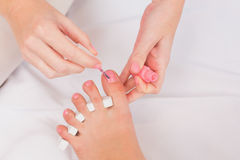 Beautician painting womans toenails Royalty Free Stock Photo