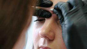 Beautician rubs with a cotton swab woman`s eyebrows. Correction eyebrow. Closeup front view. Beautician rubs with a cotton swab woman`s eyebrows. Correction stock footage