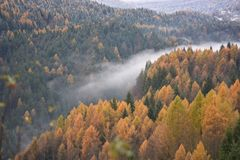The fog in the valley of the river splits in autumn from winter. Beauties of the Italian region of Veneto in Italy royalty free stock photos