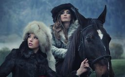 Beauties posing with a horse Royalty Free Stock Images