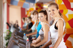 Beauties in sports club. Portrait of beautiful girls on warm-up in sports hall Royalty Free Stock Images