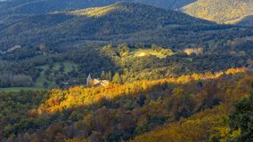 Beautifal Autumn Beech Forest En Mountain Montseny In Spain Stock Photos
