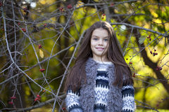 Beautifal little girl in the autumn park Royalty Free Stock Photography