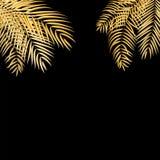 Beautifil drzewka palmowego liścia sylwetki tła Złoty wektor Il ilustracji