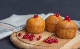 Beautifil słodka bułeczka babeczka z jagodami Obraz Royalty Free