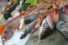 Beautifil seafood Stock Photography