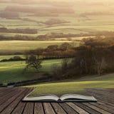 Beautifiul晚冬倾斜横跨使的晚上阳光E震惊 免版税库存照片