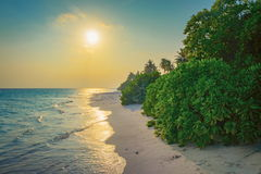 Beautifle sunset over sand beach in Maldives Royalty Free Stock Photo