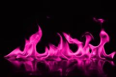 Beautifu变粉红色在黑背景的火火焰 免版税库存图片