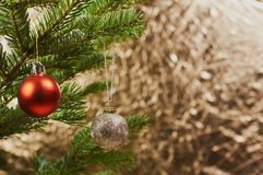 Beautiful Christmas tree and decoration Royalty Free Stock Photo