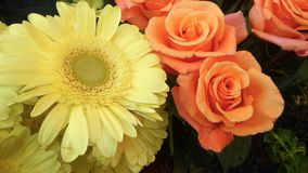 Beautifu colorful flowers solt at a street Royalty Free Stock Image