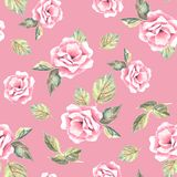 Beautifu hand-drawn flowers. Floral seamless pattern 24. Watercolor floral background. Seamless  pattern Stock Photography