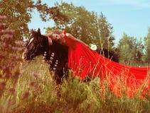 Beautifu kvinna i röd klänning på den svarta hästen Arkivbilder