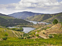 Beautifu landscape in the Douro region Royalty Free Stock Photo