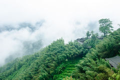 The beautifu mountains in the fog Royalty Free Stock Photography